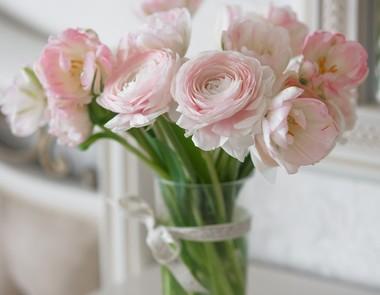 Jak Przedluzyc Zywotnosc Kwiatow Cietych Salon Meble Pl